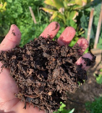 Composted green waste